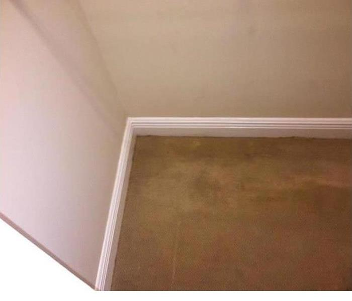 Mold under Carpeting After