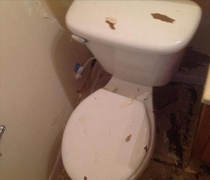 Water Damage From Toilet