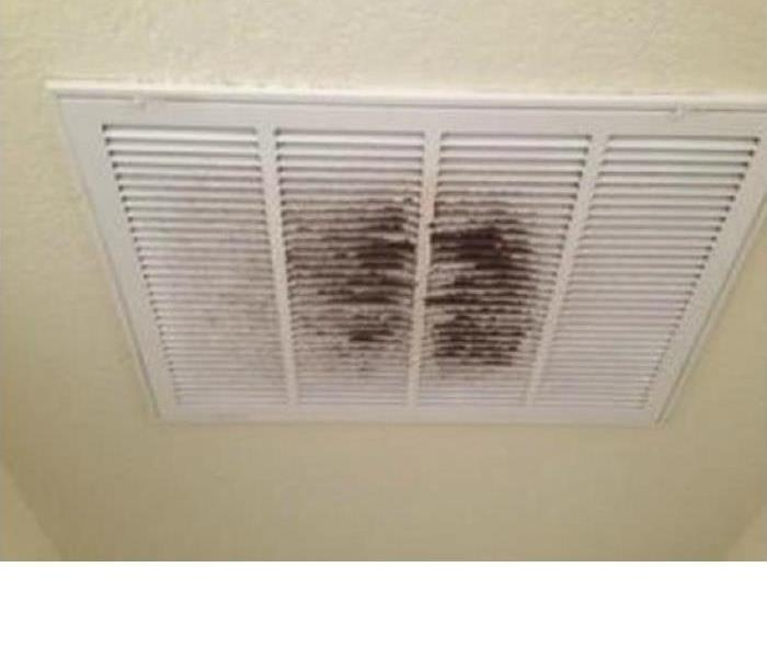 Cleaning Are your Ducts Dirty?
