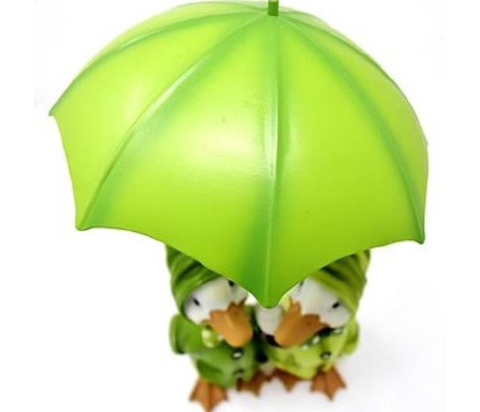 Community What is National Umbrella Day?