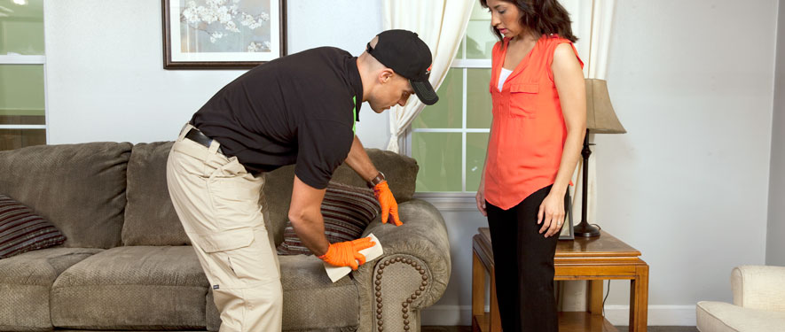 Plano, TX carpet upholstery cleaning